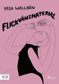 bokomslag Flickvänsmaterial