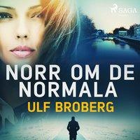 bokomslag Norr om det normala