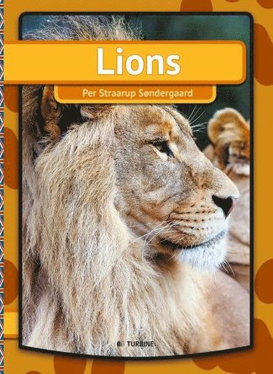 bokomslag Lions