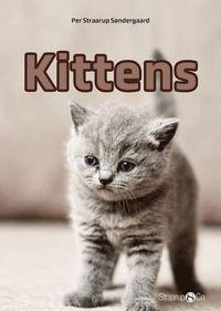 bokomslag Kittens