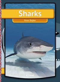 bokomslag Sharks
