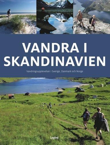 bokomslag Vandra i Skandinavien
