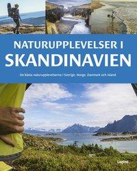 bokomslag Naturupplevelser i Skandinavien