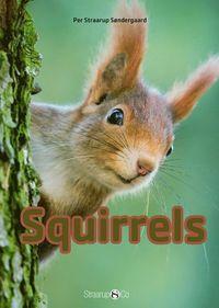 bokomslag Squirrels