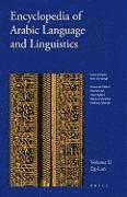 bokomslag Encyclopedia of Arabic Language and Linguistics, Volume 2