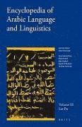 bokomslag Encyclopedia of Arabic Language and Linguistics, Volume 3
