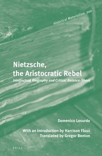 bokomslag Nietzsche, the Aristocratic Rebel: Intellectual Biography and Critical Balance-Sheet
