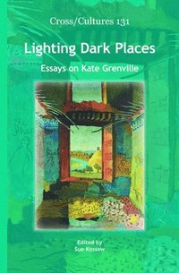 bokomslag Lighting Dark Places