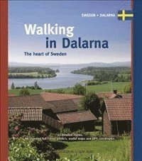 bokomslag Walking in dalarna - the heart of sweden
