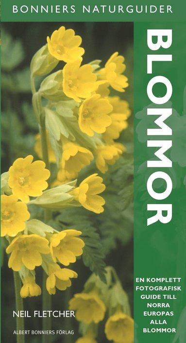 bokomslag Blommor