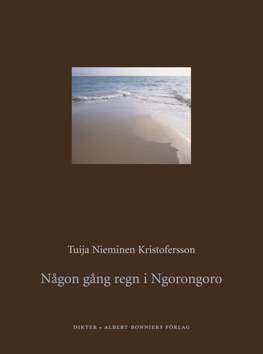 bokomslag Någon gång regn i Ngorongoro