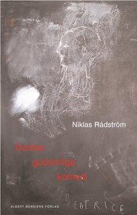 bokomslag Dantes gudomliga komedi : en dikt i tre akter efter Dante Alighieri : samt en essä