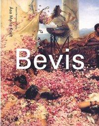 bokomslag Bevis