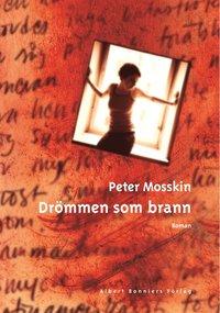 bokomslag Drömmen som brann
