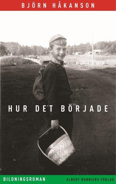 bokomslag Hur det började : bildningsroman