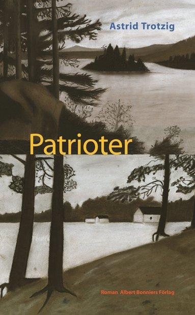 bokomslag Patrioter