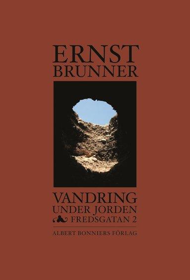 bokomslag Vandring under jorden : Fredsgatan 2