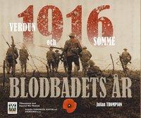 bokomslag 1916 blodbadets år : Verdun och Somme