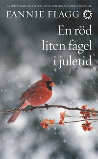 En röd liten fågel i juletid