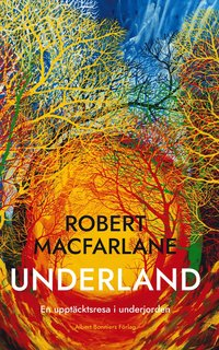 bokomslag Underland : en upptäcktsresa i underjorden