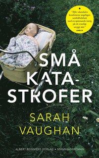 bokomslag Små katastrofer