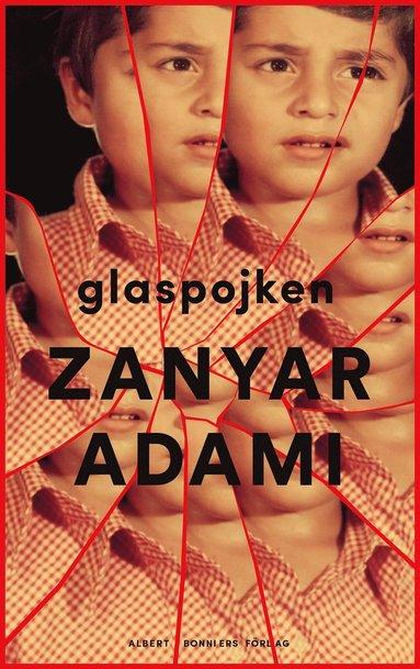 bokomslag Glaspojken
