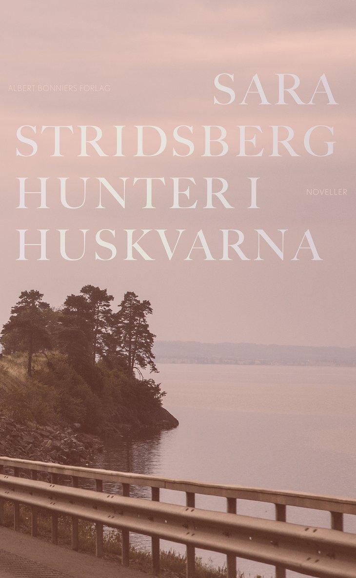Hunter i Huskvarna 1