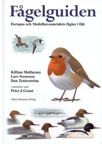 bokomslag Fågelguiden