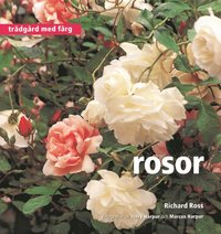 bokomslag Rosor - Trädgård med färg