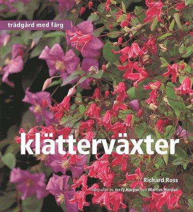 bokomslag Klätterväxter - Trädgård med färg