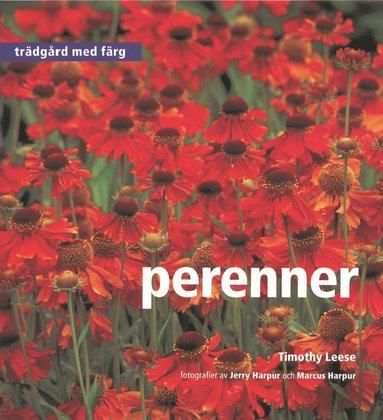 bokomslag Perenner - Trädgård med färg