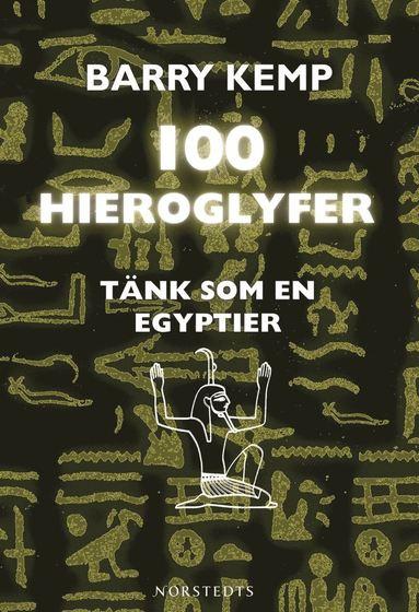 bokomslag 100 hieroglyfer :tänk som en egyptier