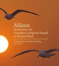 bokomslag Måsen : berättelsen om Jonathan Livingston Seagull