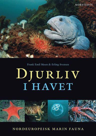 bokomslag Djurliv i havet : nordeuropeisk marin fauna