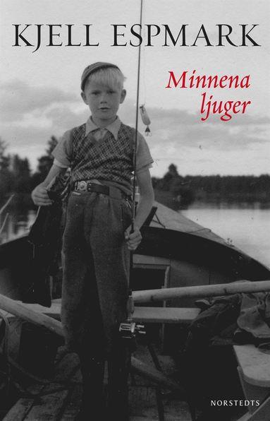 bokomslag Minnena ljuger