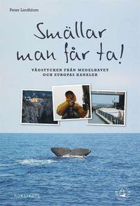 bokomslag Smällar man får ta! brev från en liten segelbåt