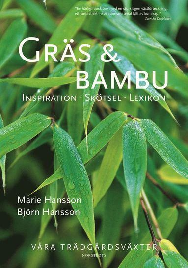 bokomslag Gräs & bambu : inspiration, skötsel, lexikon