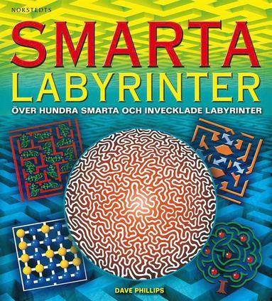 bokomslag Smarta labyrinter : över hundra smarta och invecklade labyrinter