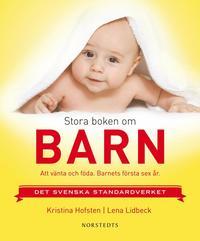 bokomslag Stora boken om barn : att vänta och föda : barnets första sex år