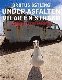 bokomslag Under asfalten vilar en strand : Midways albatrosser