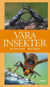 bokomslag Våra insekter