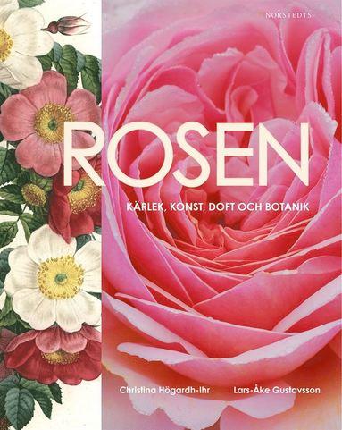 bokomslag Rosen : kärlek, konst, doft och botanik