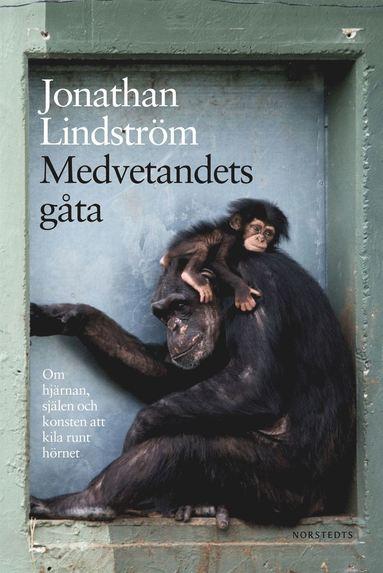bokomslag Medvetandets gåta : om hjärnan, själen och konsten att kila runt hörnet
