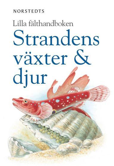 bokomslag Strandens växter & djur
