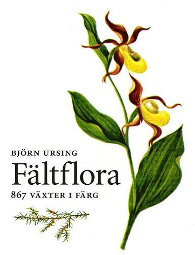 bokomslag Fältflora : kärlväxter