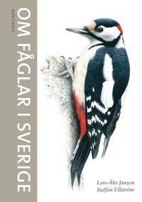 bokomslag Om fåglar i Sverige