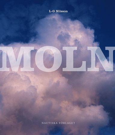 bokomslag Moln