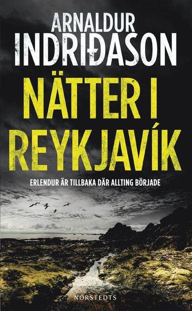 bokomslag Nätter i Reykjavik
