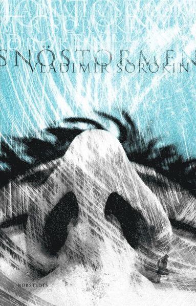 bokomslag Snöstormen