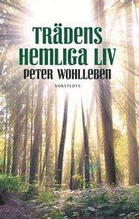 bokomslag Trädens hemliga liv